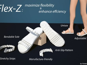 Flex-Z: Flexible Shoe