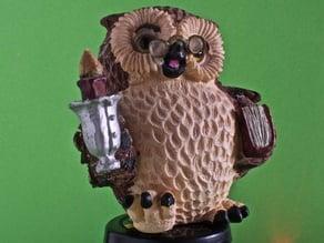 Owl Scanning
