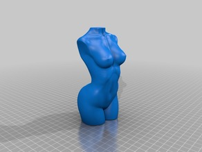 Cleaned Mesh WomanBody