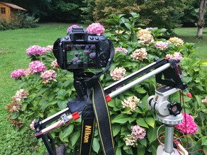 Simple Printed Motorized Camera Slider