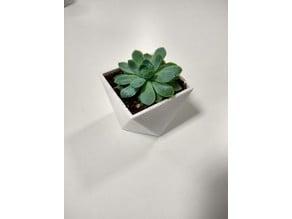 Succulent Pot - Squarely