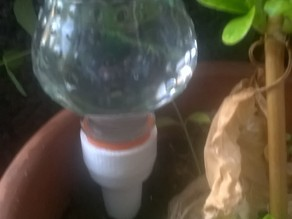 plant feeder