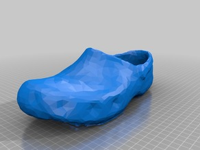 Croc Shoe