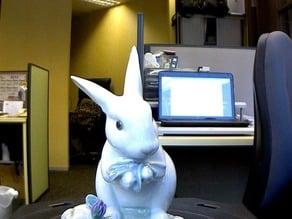 Digitizer Rabbit