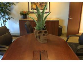 Celtic Skull Flowerpot