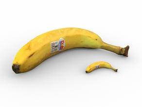 Banana w/ Banana for Scale