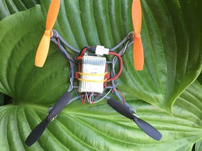 Micro Quadcopter -Walkera/Vitality Labybird H36 Version