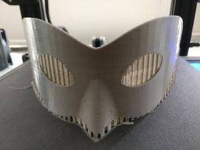 Chat Noir Miraculous Mask