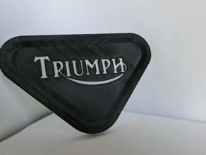 Triumph motorcycle support plate
