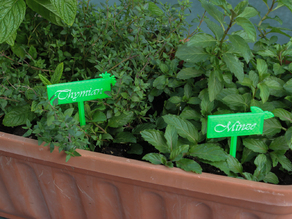 Signs for your flowerbox