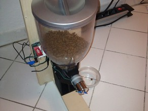 Automated Cat Feeder