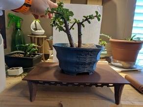 Fancy Rectangle - Bonsai Table