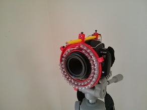 Ring Light for Macro Photography