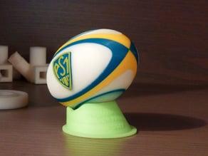Ballon ASM - Champion de France !!