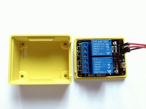 Dual Channel Relay Case