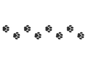 Cat paws texture roller