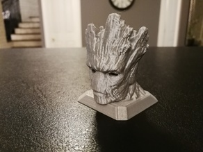 Groot Holder