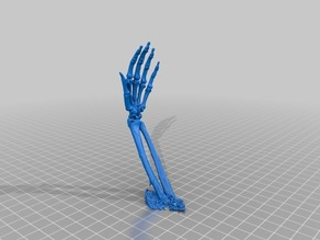 Skeleton Hands - Fixed to print without support