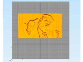 Donald Trump Giving The Bird