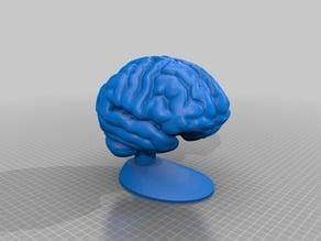 Cerveau d'impact / Impact Brain