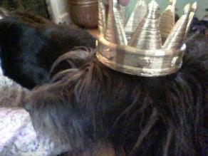 Crown Of Polygonia
