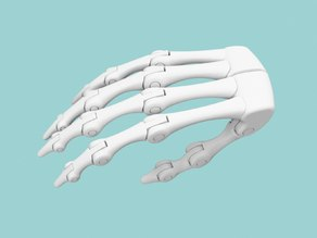 Biomimetic Hand Endoskeleton