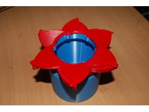 Flower Iris Box
