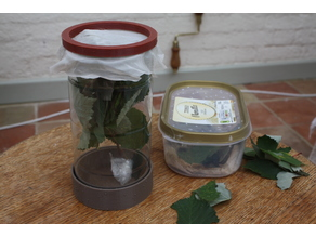 Leaf / stick insect rearing cage