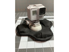 Garmin Sandbag, GoPro Mount