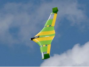 Flying Wing Buratinu