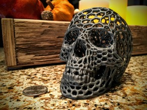 Skull (Voronoi style)