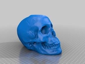 Skull 2013-10-01 04.34 PM