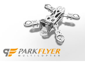 Parkflyer Screaming Fly