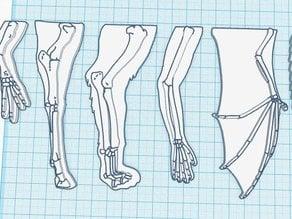 Homologous Bone Structure