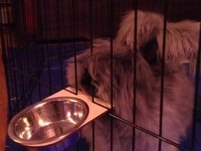 Bunny Dish Holder