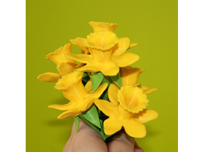 Daffodils with stems