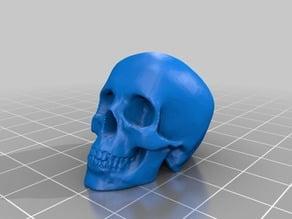 Skull low res printable closed mesh