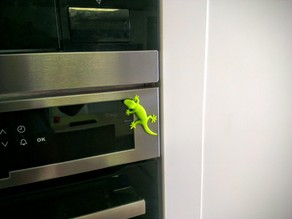 Magnetic gecko