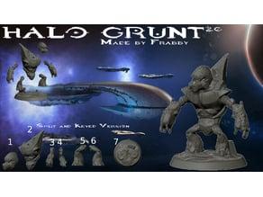 Halo Grunt 2.0 Split & Keyed Version