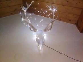 Low poly deer skull and antlers