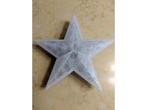 Animated LEDs Christmas Star Decoration