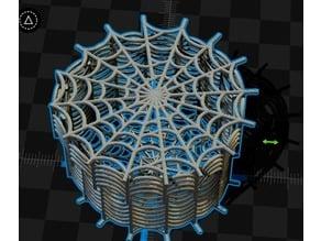 spiderweb box