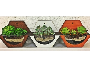 Mini wall pot