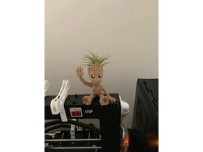 Baby Groot Waving Air Plant