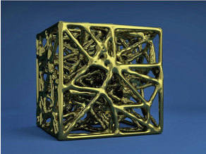 The Bone like structure Cube