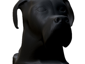 bust dog 2