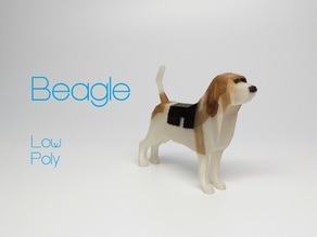 Beagle - Low Poly