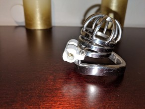 Chastity Cage Anti Pick Device