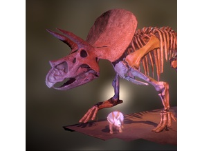 "Triceratops means ""three-horned face"""