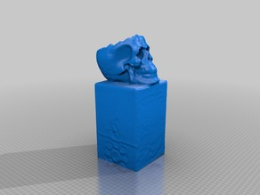 3d scan of a skull on a plinth